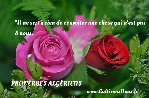 Il ne sert à rien de convoiter une chose qui n est pas à nous. Un Proverbe Algérien PROVERBES ALGÉRIENS - Proverbes Algériens - Proverbes philosophiques