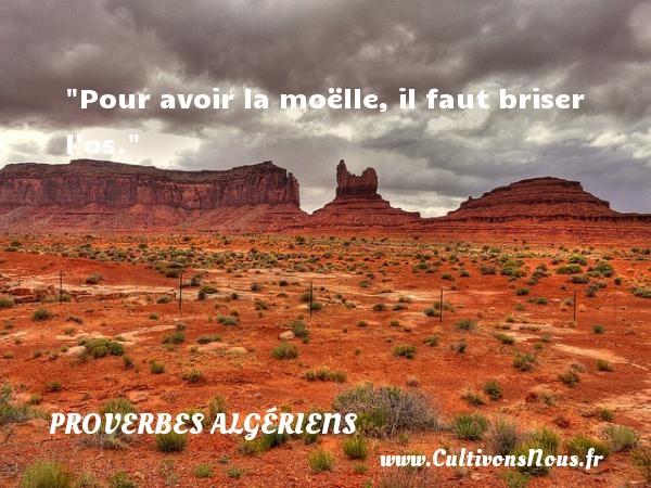 Pour avoir la moëlle, il faut briser l os. Un Proverbe Algérien PROVERBES ALGÉRIENS - Proverbes Algériens - Proverbes philosophiques
