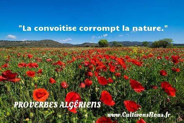 La convoitise corrompt la nature. Un Proverbe Algérien PROVERBES ALGÉRIENS - Proverbes Algériens - Proverbes philosophiques