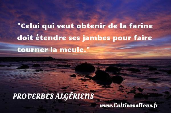 Celui qui veut obtenir de la farine doit étendre ses jambes pour faire tourner la meule. Un Proverbe Algérien PROVERBES ALGÉRIENS - Proverbes Algériens - Proverbes philosophiques