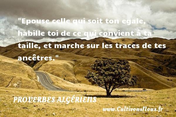 Proverbes Algériens - Proverbes fun - Epouse celle qui soit ton egale, habille toi de ce qui convient à ta taille, et marche sur les traces de tes ancêtres.  Un Proverbe Algérien PROVERBES ALGÉRIENS