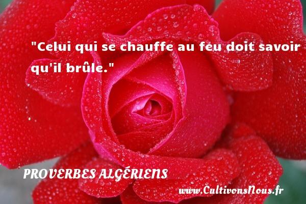 Celui qui se chauffe au feu doit savoir qu il brûle.  Un Proverbe Algérien PROVERBES ALGÉRIENS - Proverbes Algériens - Proverbes philosophiques