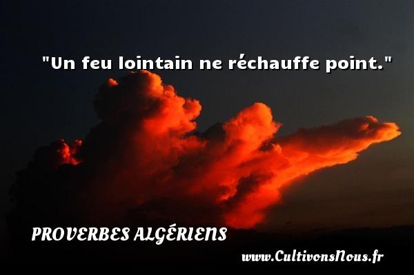 Un feu lointain ne réchauffe point.  Un Proverbe Algérien PROVERBES ALGÉRIENS - Proverbes Algériens - Proverbes philosophiques