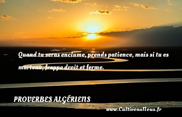 Proverbes Algériens - Proverbes patience - Proverbes philosophiques - Quand tu seras enclume, prends patience, mais si tu es marteau, frappe droit et ferme.  Un Proverbe Algérien PROVERBES ALGÉRIENS