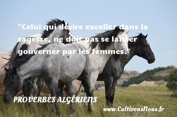 Celui qui désire exceller dans la sagesse, ne doit pas se laisser gouverner par les femmes.  Un Proverbe Algérien PROVERBES ALGÉRIENS - Proverbes Algériens - Proverbes philosophiques