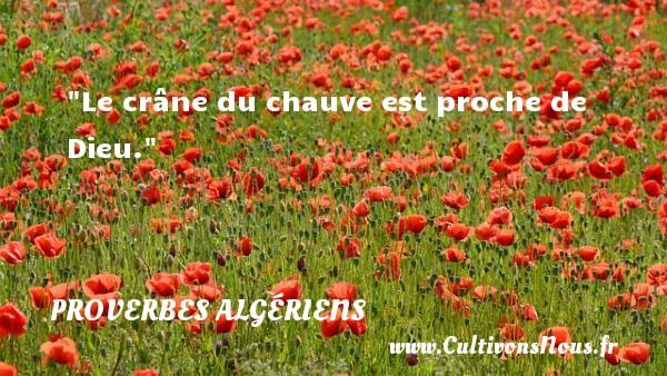 Le crâne du chauve est proche de Dieu. Un Proverbe Algérien PROVERBES ALGÉRIENS - Proverbes Algériens - Proverbes philosophiques
