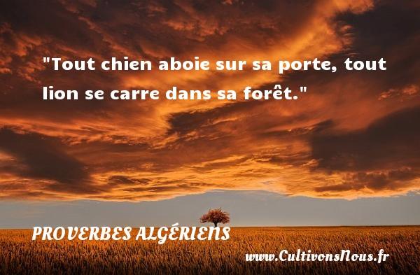 Tout chien aboie sur sa porte, tout lion se carre dans sa forêt. Un Proverbe Algérien PROVERBES ALGÉRIENS - Proverbes Algériens