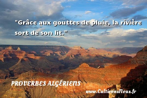 Grâce aux gouttes de pluie, la rivière sort de son lit. Un Proverbe Algérien PROVERBES ALGÉRIENS - Proverbes Algériens