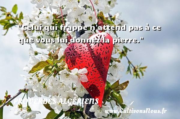 Celui qui frappe n attend pas à ce que vous lui donnez la pierre. Un Proverbe Algérien PROVERBES ALGÉRIENS - Proverbes Algériens