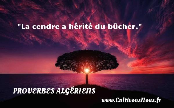 Proverbes Algériens - La cendre a hérité du bûcher. Un Proverbe Algérien PROVERBES ALGÉRIENS