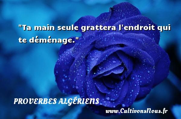 Ta main seule grattera l endroit qui te déménage.  Un Proverbe Algérien PROVERBES ALGÉRIENS - Proverbes Algériens