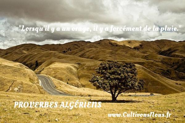Lorsqu il y a un orage, il y a forcément de la pluie. Un Proverbe Algérien PROVERBES ALGÉRIENS - Proverbes Algériens