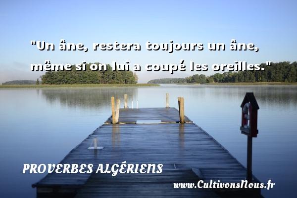 Un âne, restera toujours un âne, même si on lui a coupé les oreilles. Un Proverbe Algérien PROVERBES ALGÉRIENS - Proverbes Algériens