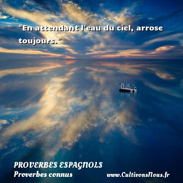 Proverbes espagnols - Proverbes connus - Proverbes philosophiques - En attendant l eau du ciel, arrose toujours. Un Proverbe espagnol PROVERBES ESPAGNOLS