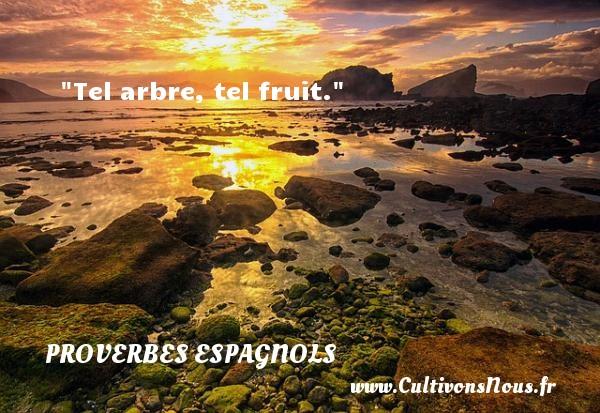 Tel arbre, tel fruit. Un Proverbe espagnol PROVERBES ESPAGNOLS - Proverbes connus - Proverbes philosophiques