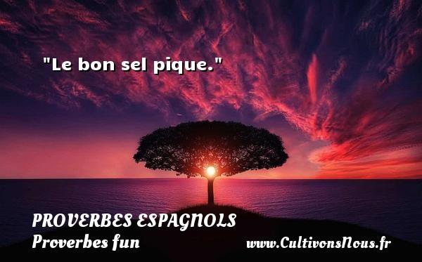 Le bon sel pique. Un Proverbe espagnol PROVERBES ESPAGNOLS - Proverbes fun
