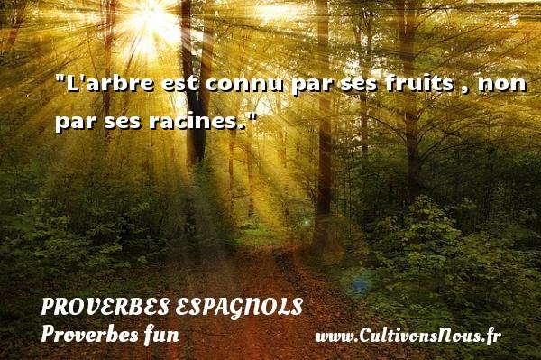 Proverbes espagnols - Proverbes fun - Proverbes philosophiques - L arbre est connu par ses fruits , non par ses racines. Un Proverbe espagnol PROVERBES ESPAGNOLS