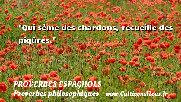 Qui sème des chardons, recueille des piqûres. Un Proverbe espagnol PROVERBES ESPAGNOLS - Proverbes philosophiques