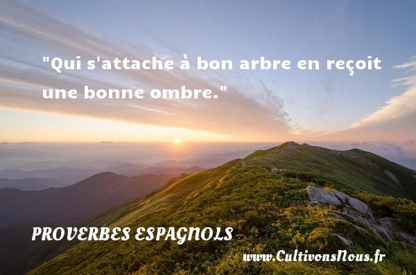 Qui s attache à bon arbre en reçoit une bonne ombre. Un Proverbe espagnol PROVERBES ESPAGNOLS - Proverbes philosophiques