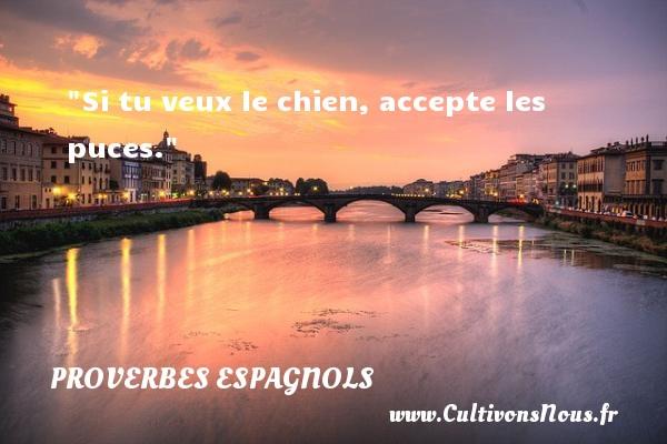 Si tu veux le chien, accepte les puces. Un Proverbe espagnol PROVERBES ESPAGNOLS - Proverbes philosophiques
