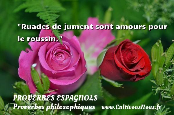 Ruades de jument sont amours pour le roussin. Un Proverbe espagnol PROVERBES ESPAGNOLS - Proverbes philosophiques