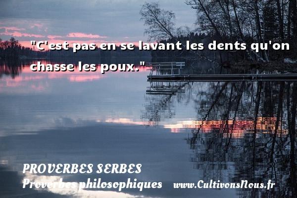 Proverbes serbes - Proverbes philosophiques - C est pas en se lavant les dents qu on chasse les poux. Un Proverbe serbe PROVERBES SERBES