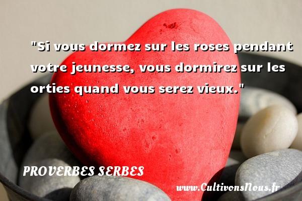 Proverbes serbes - Proverbe rose - Si vous dormez sur les roses pendant votre jeunesse, vous dormirez sur les orties quand vous serez vieux. Un Proverbe serbe PROVERBES SERBES
