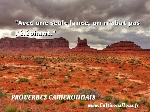 Avec une seule lance, on n abat pas l éléphant. Un Proverbe camerounais PROVERBES CAMEROUNAIS - Proverbes philosophiques