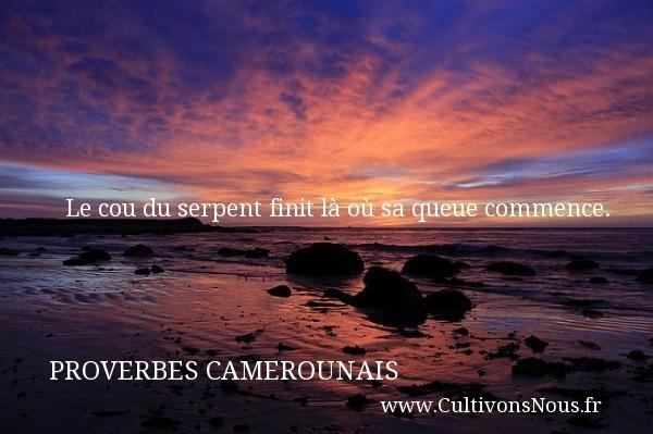Le cou du serpent finit là où sa queue commence. Un Proverbe camerounais PROVERBES CAMEROUNAIS - Proverbes philosophiques
