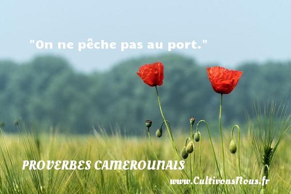 On ne pêche pas au port. Un Proverbe camerounais PROVERBES CAMEROUNAIS - Proverbes philosophiques