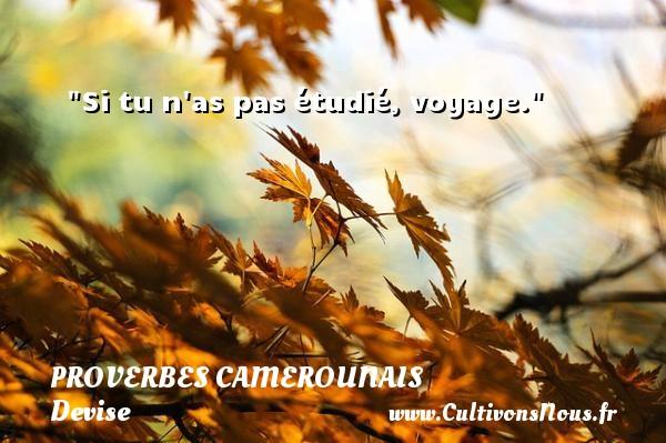 Si tu n as pas étudié, voyage. Un Proverbe camerounais PROVERBES CAMEROUNAIS - Devise - Proverbes philosophiques
