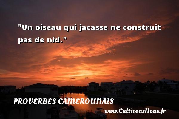 Un oiseau qui jacasse ne construit pas de nid. Un Proverbe camerounais PROVERBES CAMEROUNAIS - Proverbes philosophiques