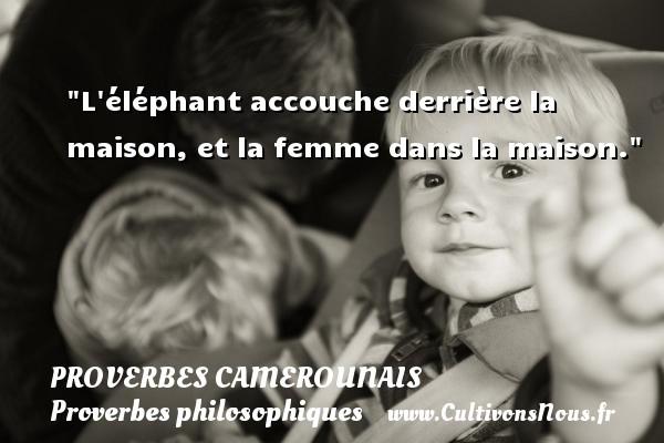L éléphant accouche derrière la maison, et la femme dans la maison. Un Proverbe camerounais PROVERBES CAMEROUNAIS - Proverbes philosophiques