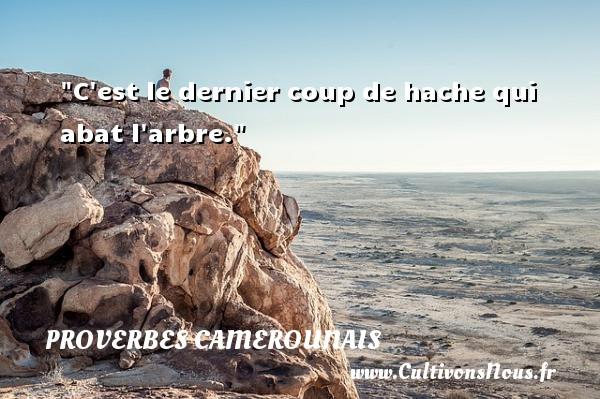 C est le dernier coup de hache qui abat l arbre. Un Proverbe camerounais PROVERBES CAMEROUNAIS - Proverbes philosophiques
