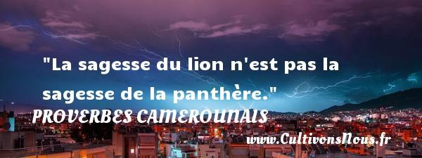 La sagesse du lion n est pas la sagesse de la panthère. Un Proverbe camerounais PROVERBES CAMEROUNAIS - Proverbes philosophiques