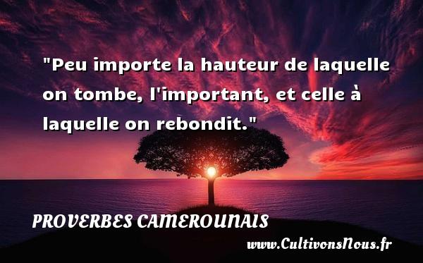 Peu importe la hauteur de laquelle on tombe, l important, et celle à laquelle on rebondit. Un Proverbe camerounais PROVERBES CAMEROUNAIS