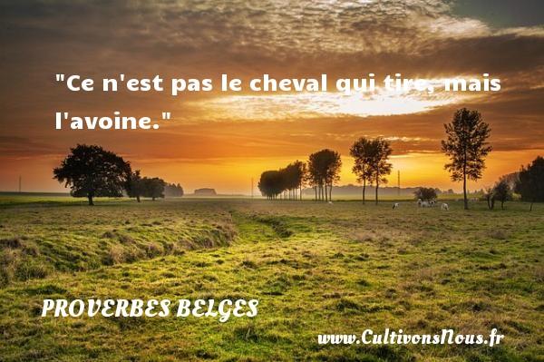Proverbes belges - Proverbes philosophiques - Ce n est pas le cheval qui tire, mais l avoine. Un Proverbe belge PROVERBES BELGES