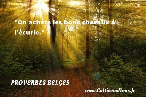 On achète les bons chevaux à l écurie. Un Proverbe belge PROVERBES BELGES - Proverbes philosophiques
