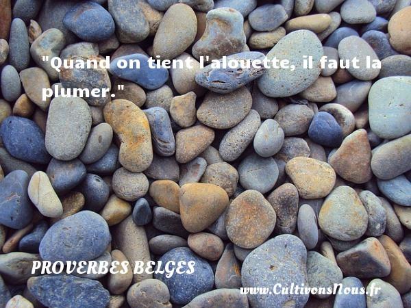 Quand on tient l alouette, il faut la plumer. Un Proverbe belge PROVERBES BELGES - Proverbes philosophiques