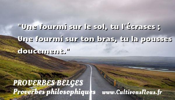 Proverbes belges - Proverbes philosophiques - Une fourmi sur le sol, tu l écrases ; Une fourmi sur ton bras, tu la pousses doucement. Un Proverbe belge PROVERBES BELGES