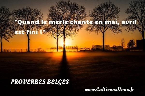 Quand le merle chante en mai, avril est fini ! Un Proverbe belge PROVERBES BELGES