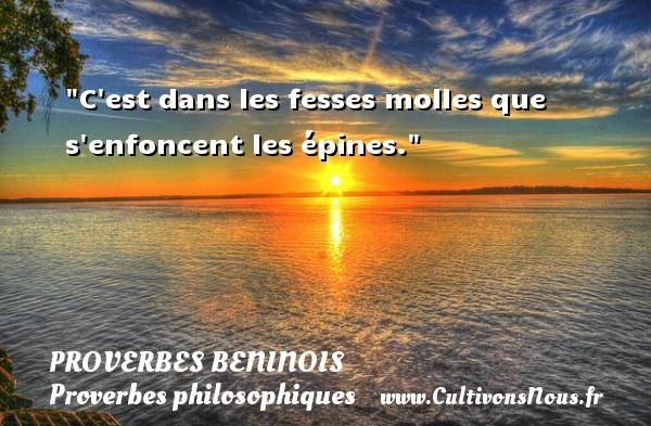 Proverbes beninois - Proverbes philosophiques - C est dans les fesses molles que s enfoncent les épines. Un Proverbe béninois PROVERBES BENINOIS