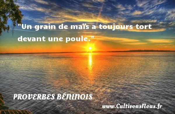 Un grain de maïs a toujours tort devant une poule. Un Proverbe béninois PROVERBES BENINOIS - Proverbes philosophiques