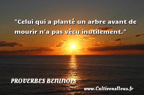 Celui qui a planté un arbre avant de mourir n a pas vécu inutilement. Un Proverbe béninois PROVERBES BENINOIS