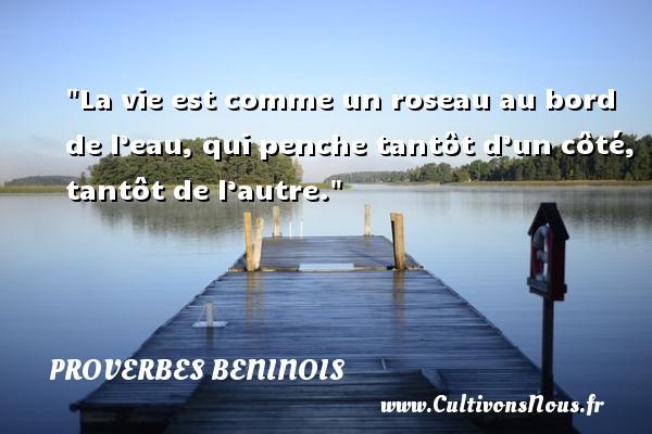 Proverbes beninois - Proverbe rose - La vie est comme un roseau au bord de l'eau, qui penche tantôt d'un côté, tantôt de l'autre. Un Proverbe béninois PROVERBES BENINOIS