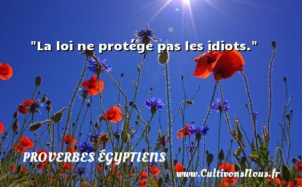 La loi ne protége pas les idiots. Un Proverbe egyptien PROVERBES ÉGYPTIENS - Proverbes égyptiens - Proverbes philosophiques