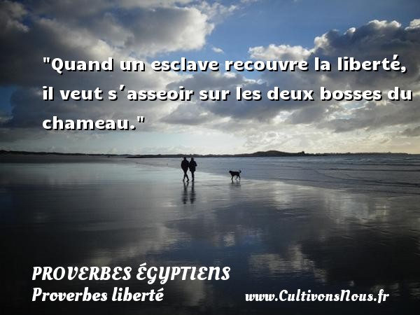 Quand un esclave recouvre la liberté, il veut s´asseoir sur les deux bosses du chameau. Un Proverbe egyptien PROVERBES ÉGYPTIENS - Proverbes égyptiens - Proverbes liberté