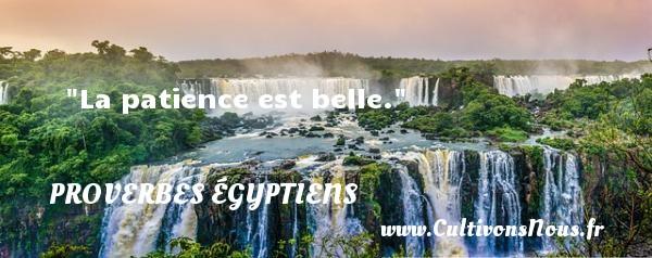 La patience est belle. Un Proverbe egyptien PROVERBES ÉGYPTIENS - Proverbes égyptiens