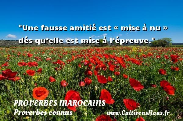 Une fausse amitié est « mise à nu » dés qu'elle est mise à l'épreuve. Un Proverbe marocain PROVERBES MAROCAINS - Proverbes connus - Proverbes philosophiques