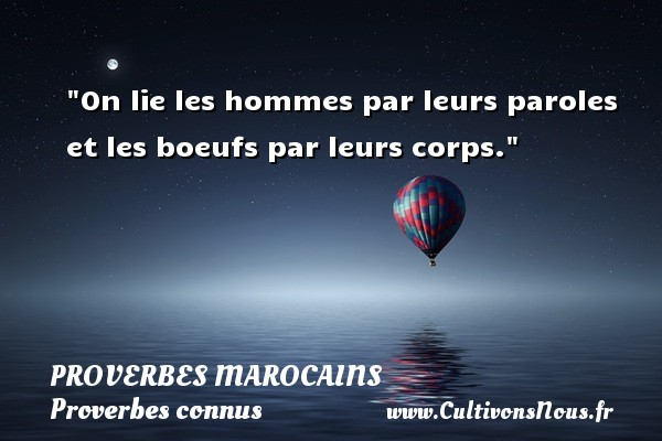 Proverbes marocains - Proverbes connus - Proverbes fun - Proverbes philosophiques - On lie les hommes par leurs paroles et les boeufs par leurs corps. Un Proverbe marocain PROVERBES MAROCAINS
